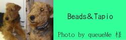 Beads&Tapio|HAU ビヨルキス、北欧犬グッズ通販