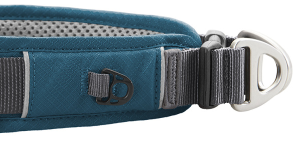 IDタグホルダーつきで便利な犬用首輪(ドッグカラー)|ドッグコペンハーゲン|犬グッズ通販HAU