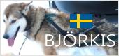 ビヨルキス(BJORKIS)|犬用ハーフチョークカラー、ハーネス|犬グッズ通販HAU(ハウ)