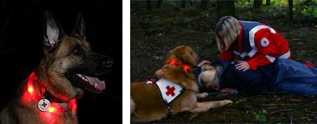 レスキュー犬、警察犬、夜間のハンティングゲームで使用|犬の交通安全ライト、光る首輪|LEUCHTIE 夜のお散歩ライト|犬グッズ通販HAU