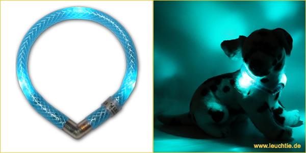 ターコイズ|犬の交通安全ライト、光る首輪|LEDドッグカラー LEUCHTIE mini(小型犬用セーフティーライト)|犬グッズ通販HAU