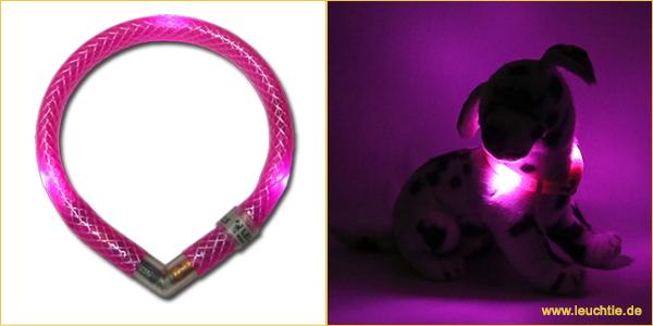ホットピンク|犬の交通安全ライト、光る首輪|LEDドッグカラー LEUCHTIE mini(小型犬用セーフティーライト)|犬グッズ通販HAU