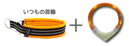 光る首輪ではないので、丈夫で使いやすいいつもの首輪もつけられる|LEUCHTIE PRO|犬グッズ通販HAU