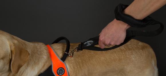 引っぱりの力が強い中型犬、大型犬用リード|トレ・ポンティ|犬グッズ通販HAU