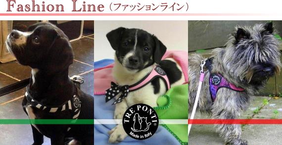 Tre Ponti(トレ・ポンティ)犬用ハーネス《Fasion Line》|犬グッズ通販HAU
