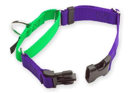 バックル付きで着脱簡単|Wiggles Wags & Whiskers バックルマーチンゲールカラー|犬グッズ通販HAU