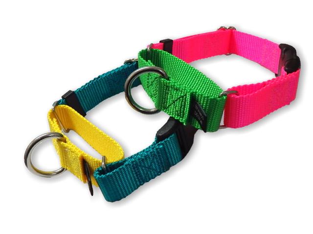 犬用バックル付ハーフチョークカラー首輪|お散歩、トレーニングにおすすめのドッグカラー|犬グッズ通販HAU